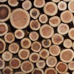 長期耐久性と強い支持力「天然木パイル杭工法」