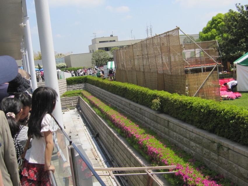 植木祭り 003