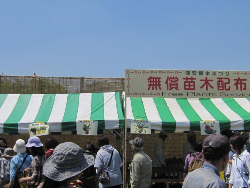 植木祭り 004